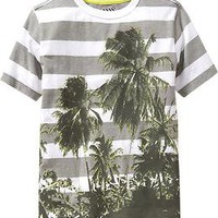 Boys Mixed Striped Photoreal-Graphic Tees | Old Navy