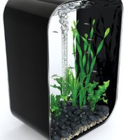 biOrb Life 60 Aquarium, 16 Gallons, Piano Black: Pet Supplies