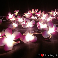 35 Of Pupple Frangipani Flower String Lights For Wedding and House decoration (35 Flowers/Set)