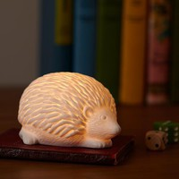 Woodland Nightlight (Hedgehog)
