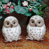 Collectible Baby Owlet Ceramic Salt and Pepper Shakers Kitchen Shelf