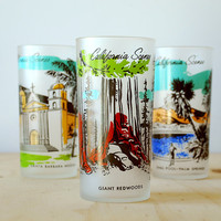 Giant Redwoods California Souvenir Tumbler California Scenes Retro Kitsch