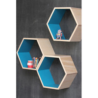 Turquoise Honeycomb shelves
