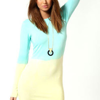 Daisy Long Sleeve Ombre Bodycon Dress