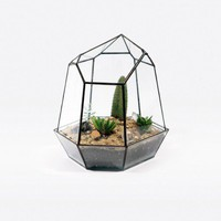 Quartz 2 Terrarium - Accessories
