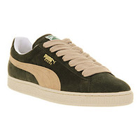 Puma SUEDE CLASSIC FOREST NIGHT Shoes - Puma Trainers - Office Shoes