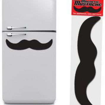 Giant Magnetic Mustache