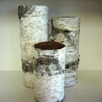Birch bark vases set of 3 Wonderful wedding by NHWoodscreations