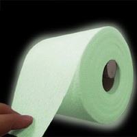 Glow in the Dark Toilet Roll