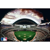 MLB™ Stadium Wall Mural