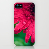 Raindrop Daisy iPhone & iPod Case by Erin Johnson