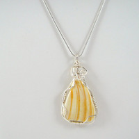 Wire Wrapped Seashell Necklace