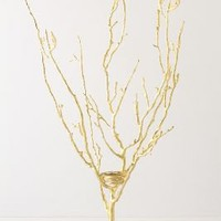 Wish Tree Jewelry Holder, Large - Anthropologie.com