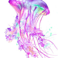Print from original watercolor jellyfish series by Jessica Durrant titled Electric Feel No. 2