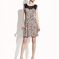 BetseyJohnson.com - LACE NECKLINE FLORAL DRESS MULTI