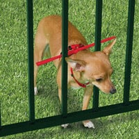 The Escape Preventing Dog Harness - Hammacher Schlemmer
