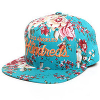 DJPremium.com - Men - Shop by Brand - New - Team Snapback Cap