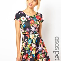 ASOS PETITE Exclusive Floral Print Skater Dress With Belt