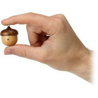 ThinkGeek :: Acorn Wooden Speaker with Radio