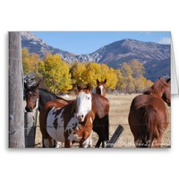 Miss You Friend Horses Western Mountain Art from Zazzle.com