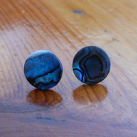 Blue Paua Shell Stud Earrings - Shell Stud Earrings - Silver Stud Earrings, Blue Stone Post Earrings
