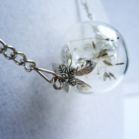 Real Dandelion Seed Filled Glass Orb Necklace In Silver Medium Orb Lucky You