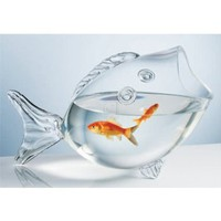 CLEAR FISH BOWL - CLEAR FISH SHAPED BOWL:Amazon:Kitchen &amp; Dining