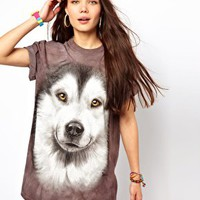 The Mountain Alaskan Dog T-Shirt at asos.com