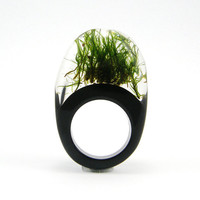 Moss Ring, Unique Clear and Black Resin Ring with Natural Moss
