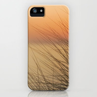 sea ​​urchins iPhone & iPod Case by Guido Montañés