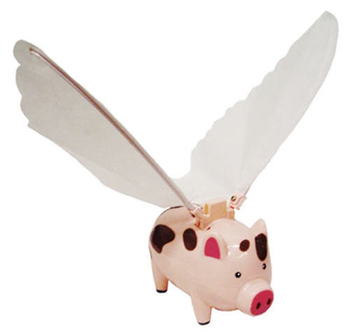 Flying Pig - Cool Gifts From Cool Stuff Express