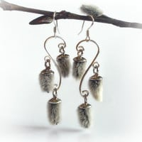 Willow catkin earrings, chandelier sterling silver earrings with real pussy willow buds, nature's treasure