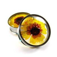Coreopsis Flower Embedded Plugs gauges  1 by mysticmetalsorganics