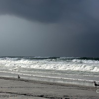 Stormy Photograph by Debra Forand - Stormy Fine Art Prints and Posters for Sale