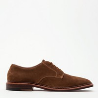 Alden / Snuff Suede Blucher