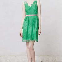 Anthropologie - Cloverlace Dress