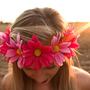 Light Pink and Dark Pink Daisy Flower Crown