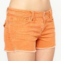 Surfer Storms Shorts - Roxy