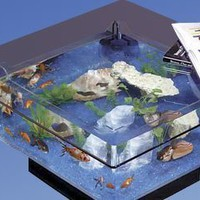 Midwest Tropical 675 Square Aquarium Coffee Table:Amazon:Furniture & Decor