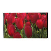 Red Tulips iPad Folio Cover from Zazzle.com