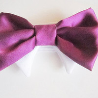 Purple Eggplant and More Colors  Formal Wear Bow Tie for your dog or cat