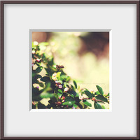 Nature Photography, bee photography, fine art photography 5x5, leaves photography, Garden, Rustic, Woodland, Retro photography,