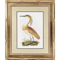 Paragon Squated Heron Framed Print - Selby - 1407 - All Wall Art - Wall Art & Coverings - Decor