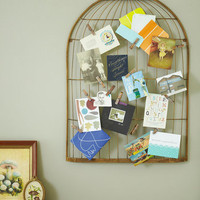 Interest Coop Keepsake Board