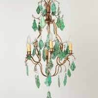 Bird  Branch Decoupage Chandelier