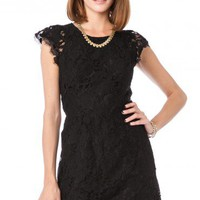 Sarafina Dress in Black - ShopSosie.com