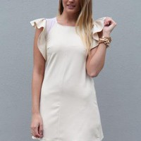 Cream Dress with Mesh Detail and Ruffle Frill Shoulders