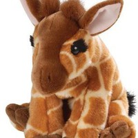 "Wild Republic Cuddlekin 12"" Baby Giraffe:Amazon:Toys & Games"