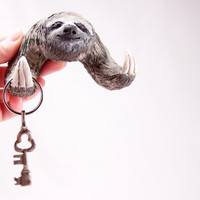 A Sloth to Hold Your Keys - Wall Mountable Double Hook