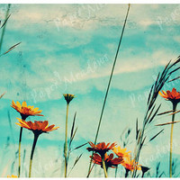 Orange and Blue Sky and Flowers Photo Nursery Image Download, For Girls Room, Clouds, Dreamy Meadow 12x18, Cottage Chic
